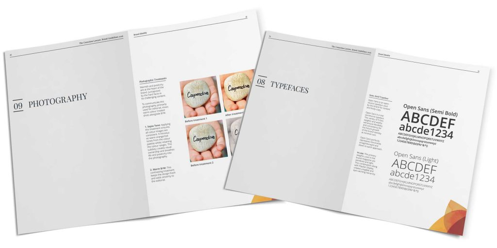 Brand-Designer-TCL